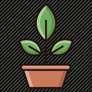 Botany-512